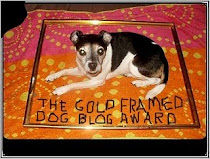 Gold Framed Dog Blog Award