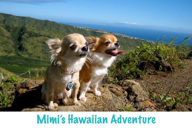 Mimi's Hawaiian Adventure