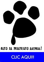 No al maltrato de animales!!