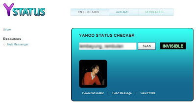 Yahoo Status Invisible Checker