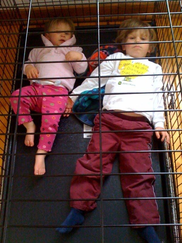 [cage.aspx]