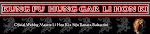 Kung Fu Hung Gar - Lin Hon Ki