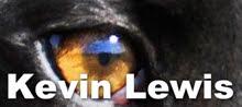 Kevin Lewis - Greyhound Massage Therapist