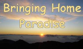[bringing+home+paradise+7.jpg]
