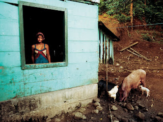 Beautiful Photography picture of Costa Rican Life