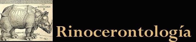 Rinocerontología