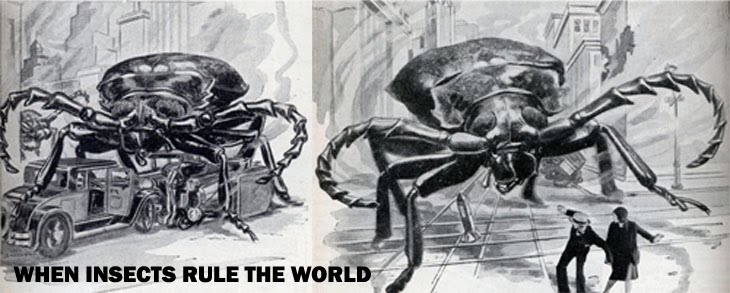 When Insects Rule the World