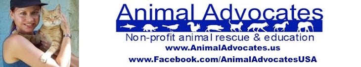 Mary Cummins, Animal Advocates, Cummins Real Estate Services