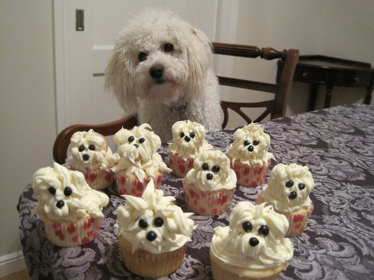 Buster Cupcakes