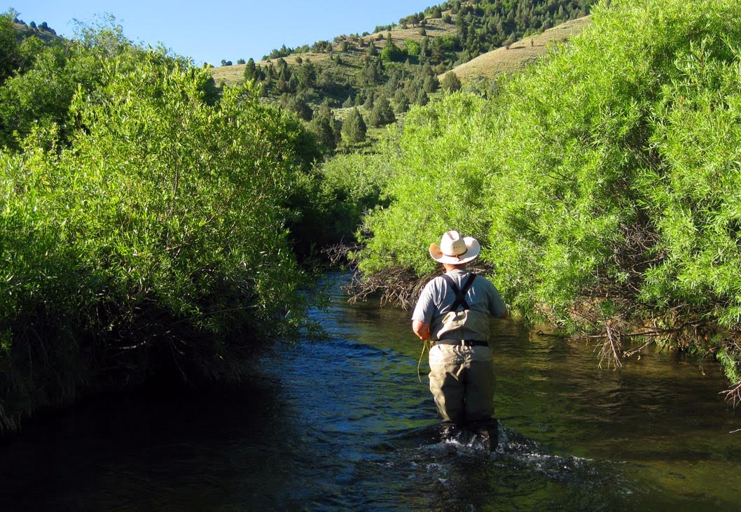 High altitude fly fishing yellowstone and blacksmith fork for Yellowstone fly fishing