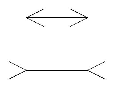 iluzia lui Muller-Lyer
