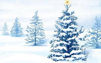 poze brad de craciun wallpaper brad impodobit peisaj de iarna