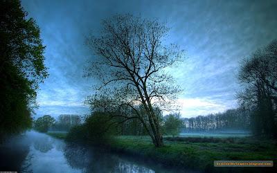 rau cer nori iarba frumos