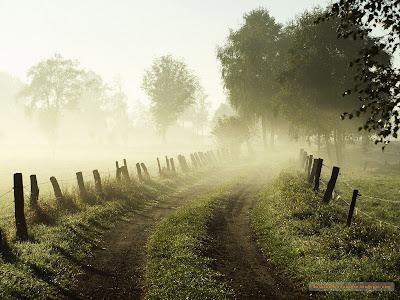 drum ceata gard senin dimineata