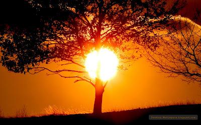cer rosu apus de soare