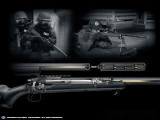 Arme cu aer comprimat, arme sportive de tir