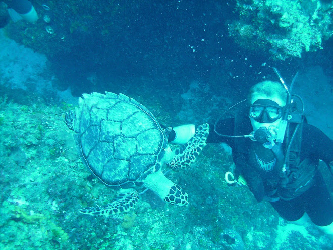 Brock scuba diving in Mexico