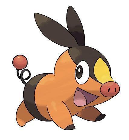 Pokemon nuevos pokemon - Cochon pokemon ...