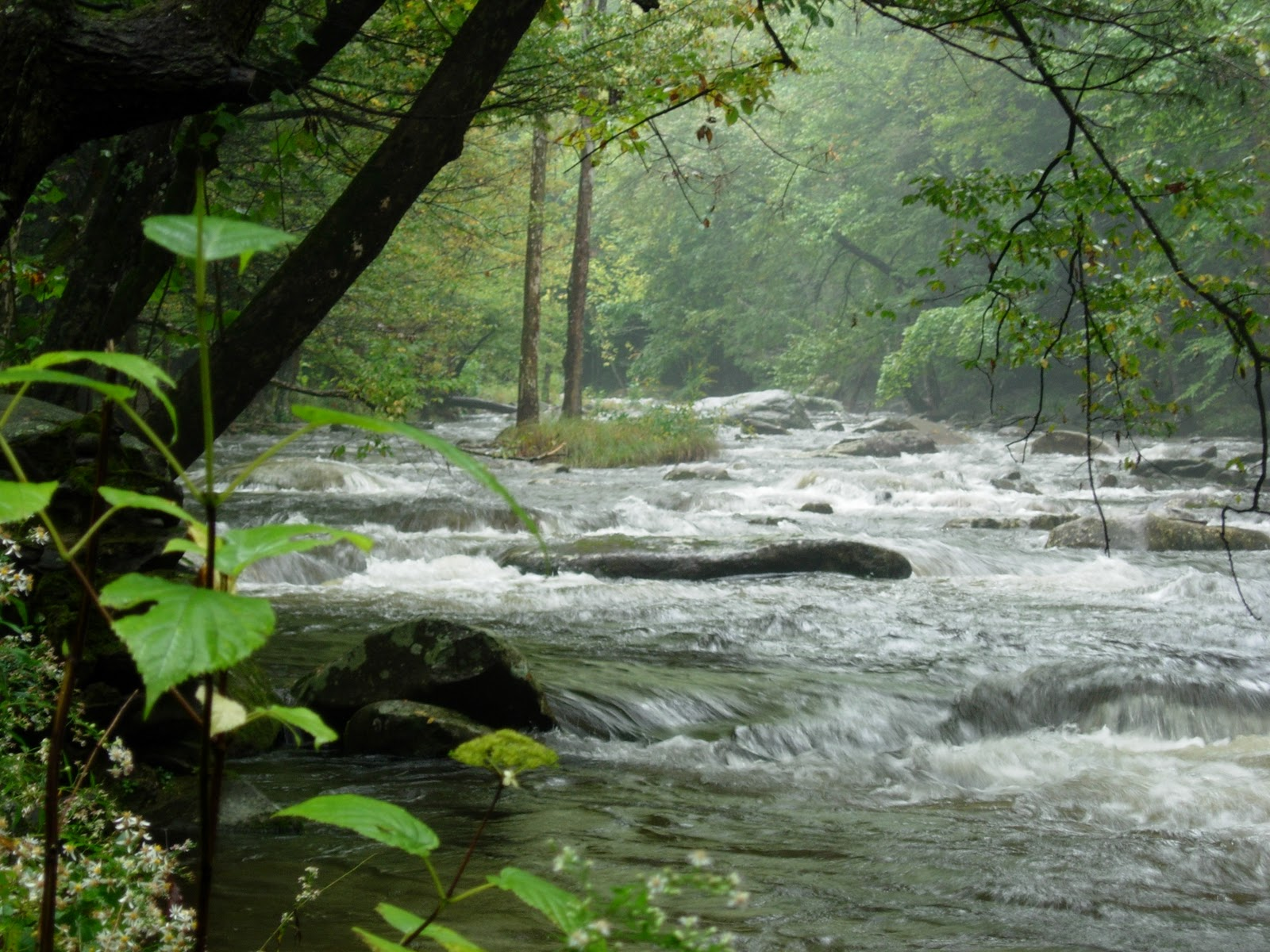 peace like a river Peace like a river isaiah 26 in isaiah, we have precious promises about what we receive through jesus christ in isaiah 26, we learn how to experience peace like a river.