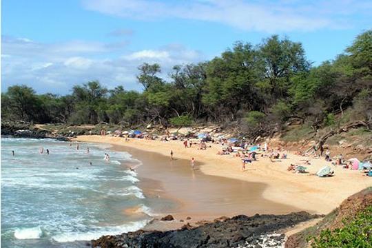 нудисты ласкают друг друга на пляже видео онлайн