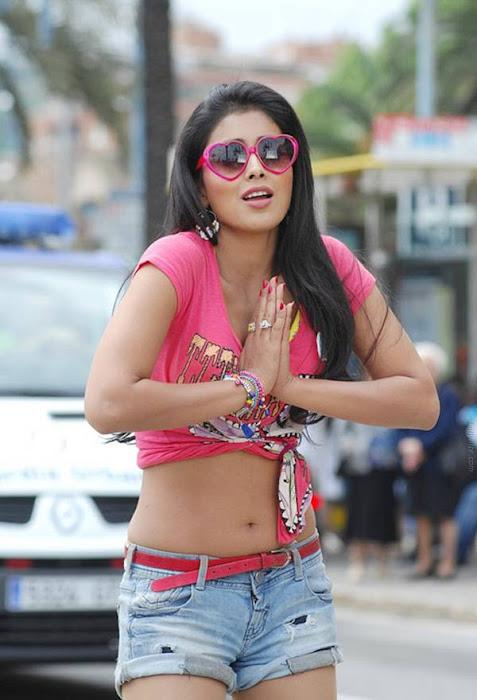 shriya saran posing actress pics