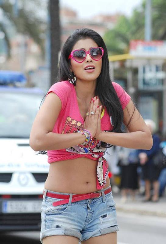 Shriya Saran  Posing Mood Photoshoot images
