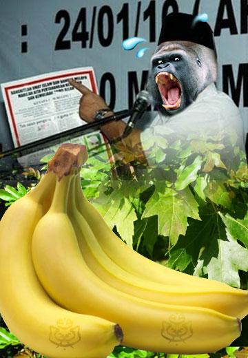 http://1.bp.blogspot.com/_oFuZ31ZC-Mk/S_HsxQyABbI/AAAAAAAABfo/ryKvCbBoFH0/s1600/mob1900_gorilla_ali.jpg