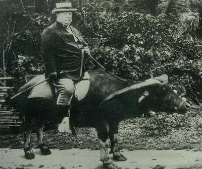taft.buffalo.jpg