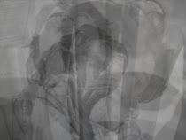 Mi leve imagen en la Sombra...