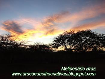 O nascer do sol,no cariri paraibano.