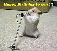 happy birthday my pet