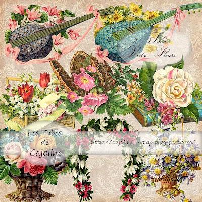 http://cajoline-scrap.blogspot.com/2009/10/freebie-8-tubes-psp-vintage-fleurs.html