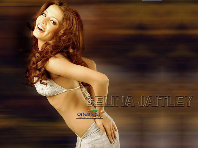 Celina Jaitley Sexy Indian Wallpaper