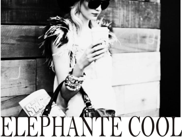 Elephante Cool