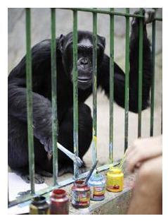 jimmy simpanse jago melukis