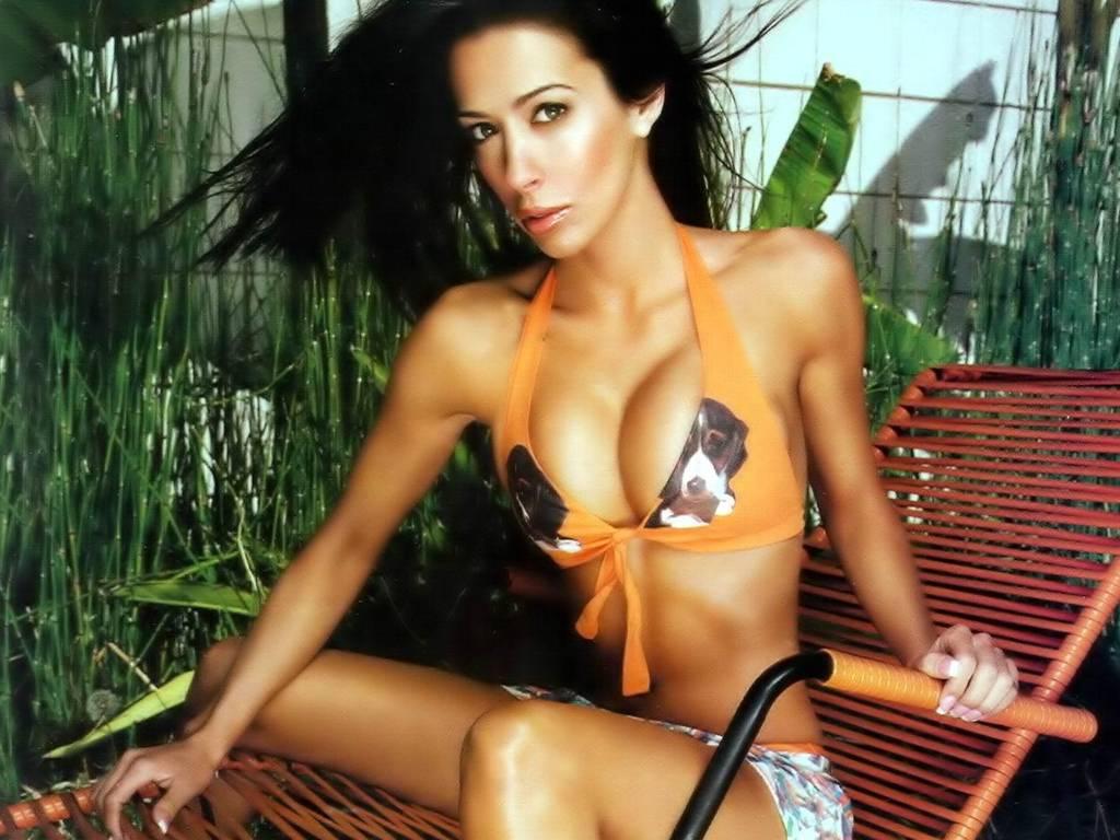 amy weber model actress