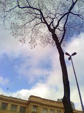 Fotografia: Fora de Mim