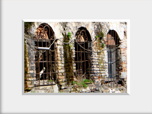 3 Old Windows | 3 Eski Pencere