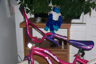 i noticed the dates when i just posted the cat in the box pic.  double time. for some reason, sabrina always takes pics of this monkey with the bike.  it's been living there (or actually on the bike) for a month now.
