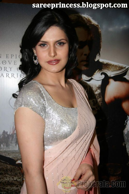 Zarine Khan in Red Saree