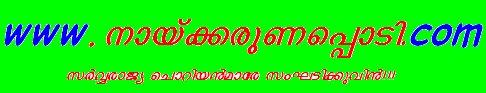 naykarunapodi.com