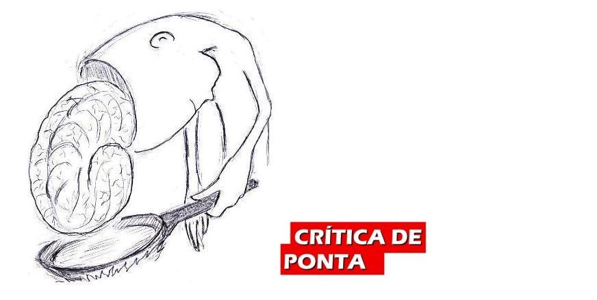Crtica de Ponta