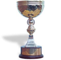 Trofeo Campeón 2 división año 2006