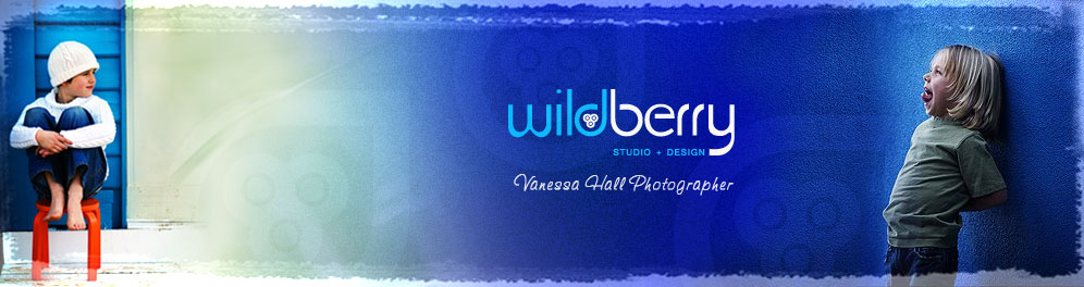 Wildberry Studio & Design