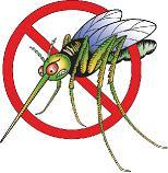 Nanny Bans Mosquito Again