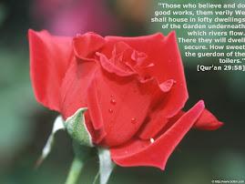 Bunga Ros untuk wanita