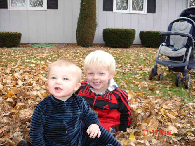 Kaden & Noah in the Leaves