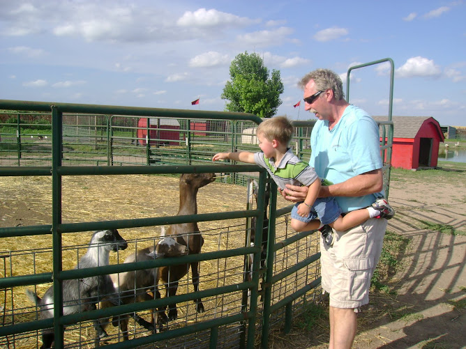 Noah and Papa, feeding the goats