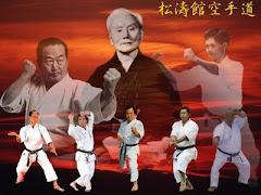 La esencia del karate Shotokan