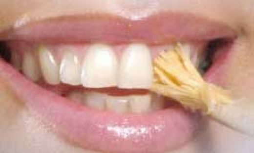 Miswak for Teeth
